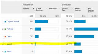 03. Statistikat e faqes për një periudhe 1 mujore, ku janë vetëm 43 vizitorët nga Media Sociale (Facebook)